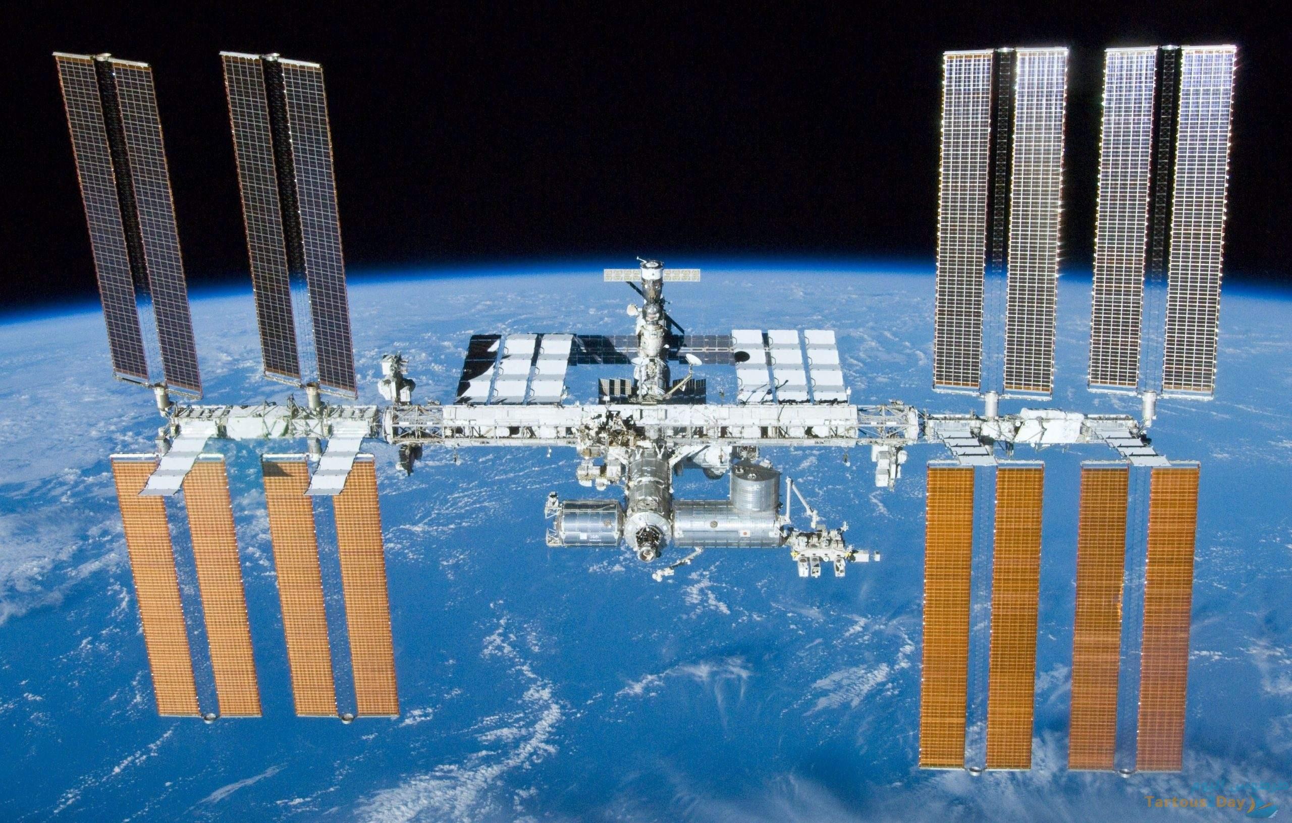 اكتشاف سلالات بكتيريا غير معروفة على متن محطة الفضاء الدولية .
