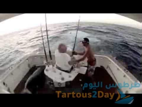 سمكة عملاقة تزن 90 رطلاً تقفز فوق قارب قبالة جزيرة ماركو بفلوريدا (فيديو) .