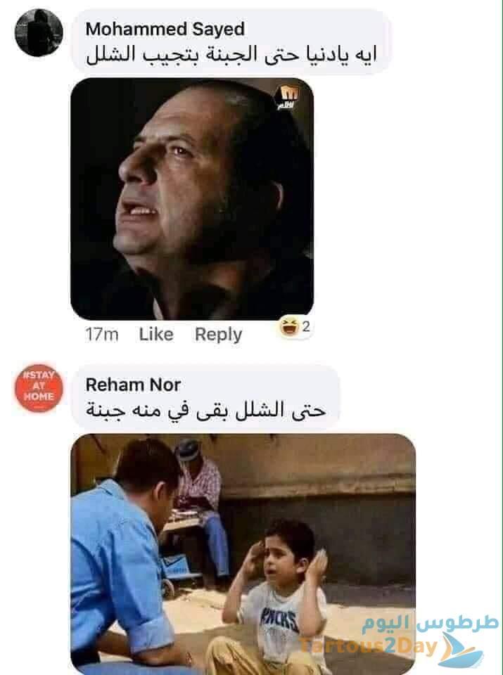 طرائف المصريين عن جبنة شلل